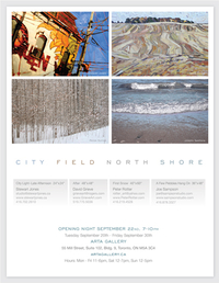 CITY  FIELD  NORTH  SHORE